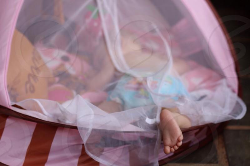 baby in mosquito net photo