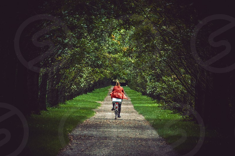 A girl in red on a bicycle makes her way down a path through the Sleepy Hollow-like woods. photo