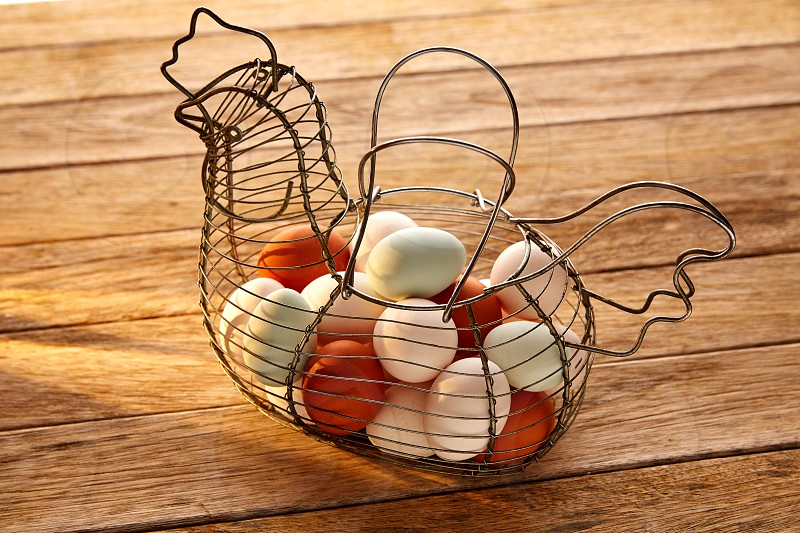Eggs in a vintage hen shape basket on wood with blue easter white and brown colors photo