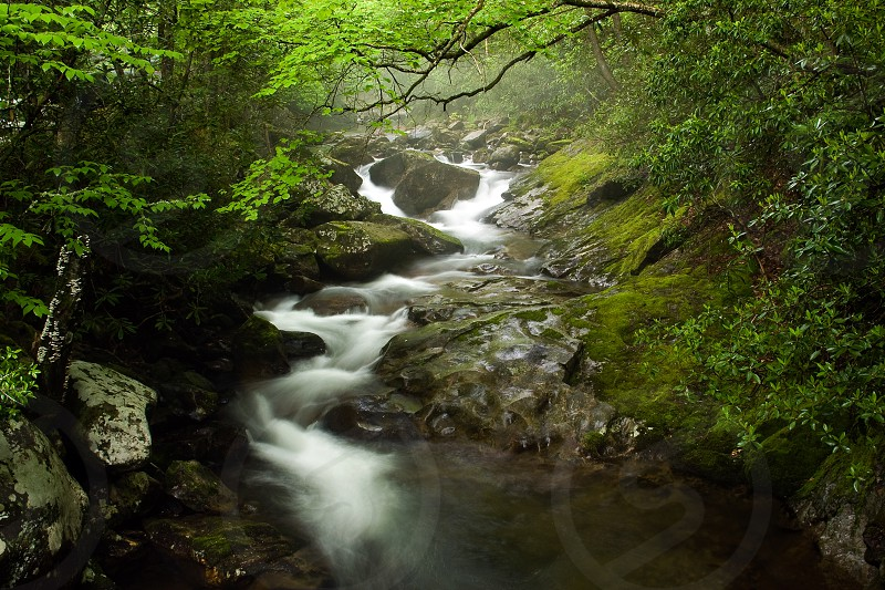mountains stream water cold green rocks curvy peaceful photo