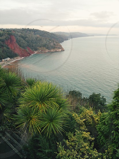 The misty view from the cliff-top gardens of Babbacombe Devon UK. photo