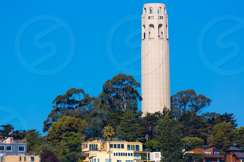 Coit Tower San Francisco California in a blue sky day USA photo