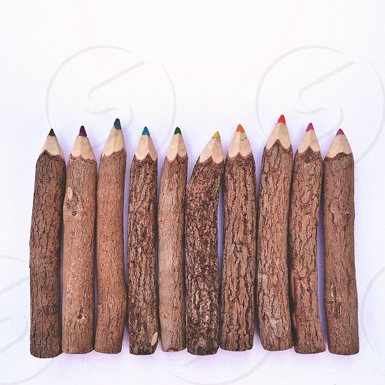 multi collored wooden crayons photo