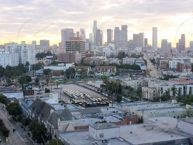 Living in Los Angeles  photo