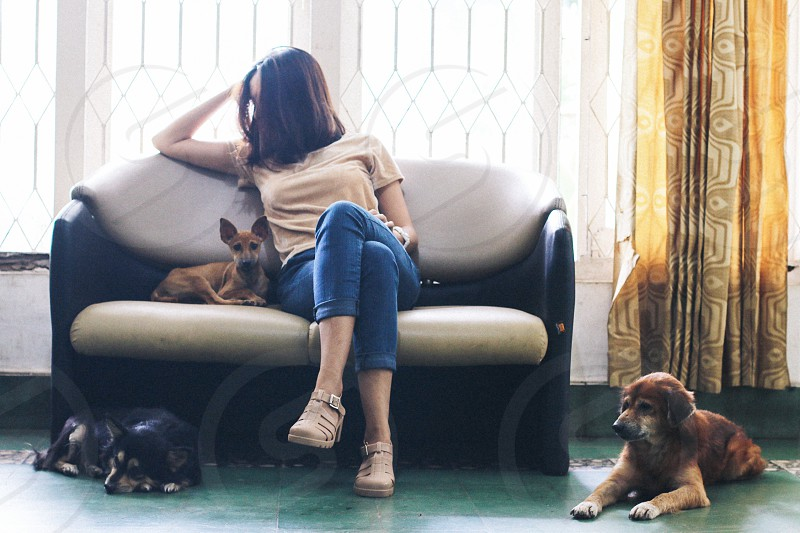woman and dog on black and beige couch photo