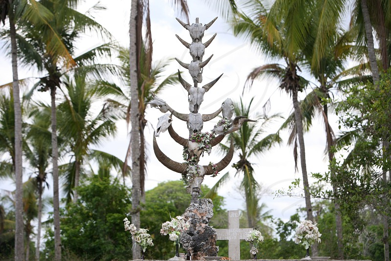 a traditional graveyard at the village of Raca in the east of East Timor in southeastasia.