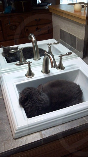 Perfect fit... photo