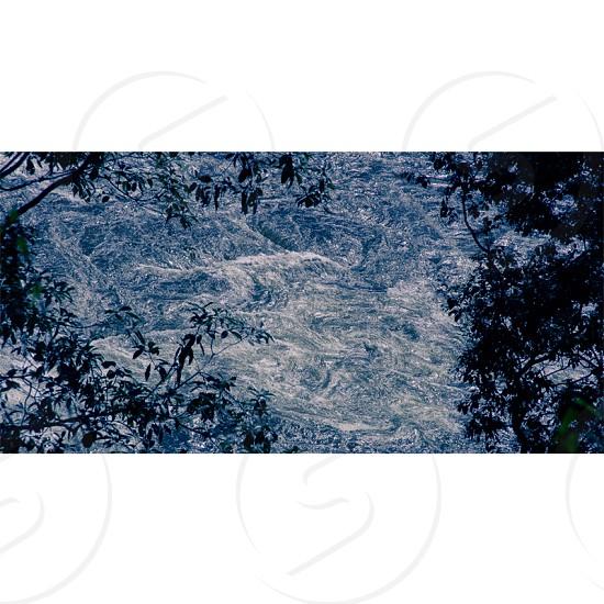 #water #lake #tree #flow #nature photo