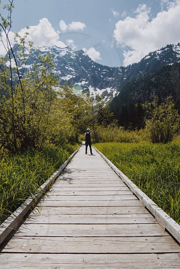 standing on wooden bridge in nature photo