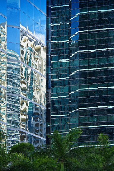 Architecture Miami urban city cityscape building jungle modern glass tower reflections photo
