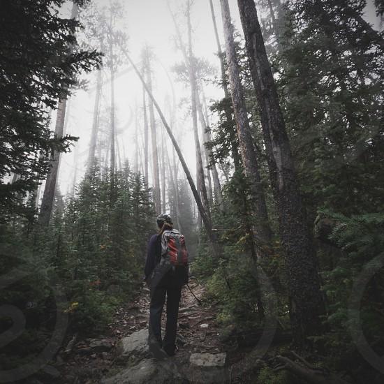 woman hiking photo