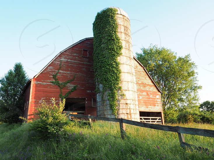Barn farm red rural summer landscape  photo