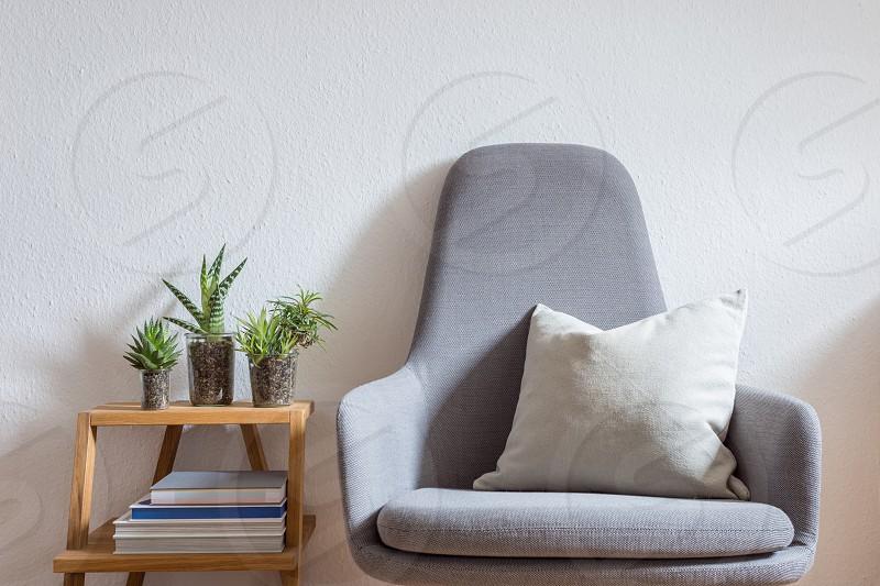 armchair chair bright modern living loft interior design succulents photo