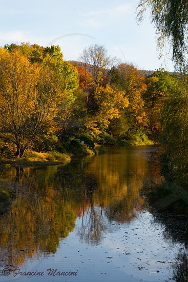 Lake trees fall colors country reflections  photo
