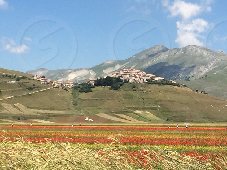 Castelluccio di NorciavillageplacedestinationumbriaItalytourismvisitmeadowhillpanoramalandscape photo