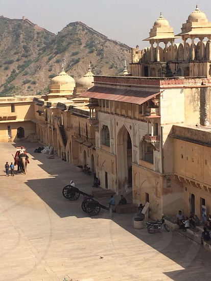 Elephants at the Amber Fort Jaipur India photo