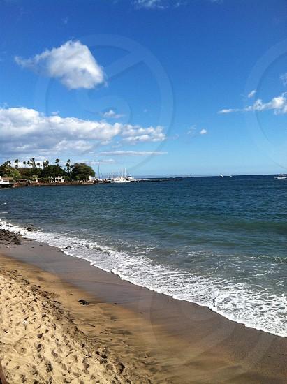 Harbor in Maui photo