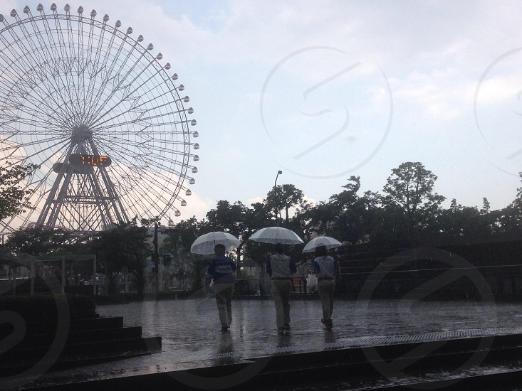 People with umbrellas in front of ferris wheel photo