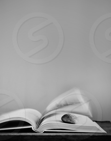 grayscale photography of rock on top of book page photo