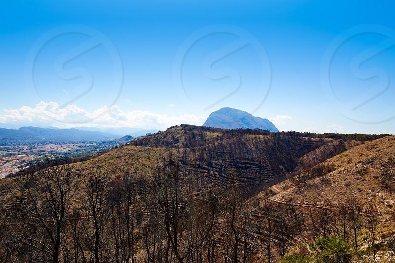 Montgo Javea Xabia burned fire trees in Alicante Spain photo