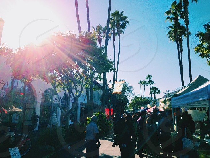 Santa Barbara Southern California market street fare summer photo