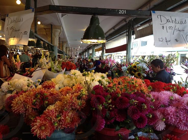 Open air market - Dahlias for sale photo