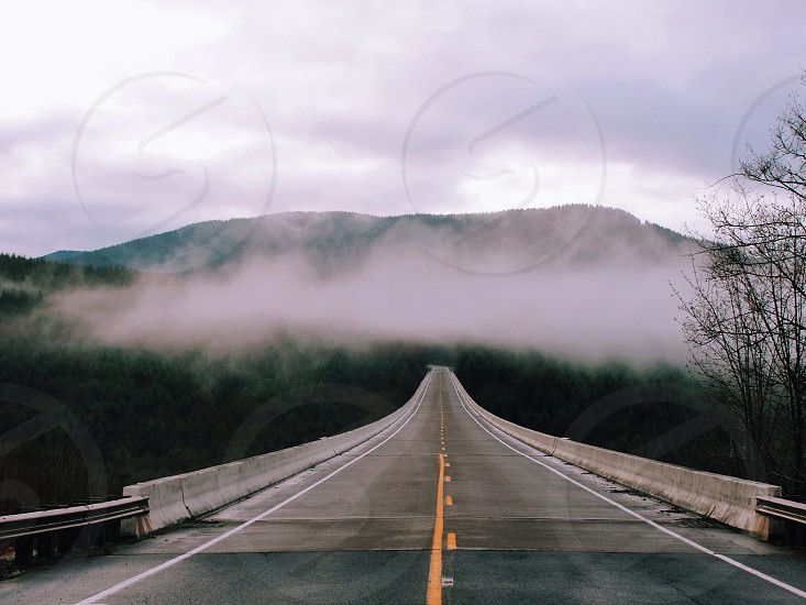 Road to fog.  photo