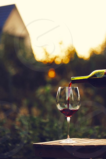 wine grape viniculture viticulture Merlot grape red dry red dry wine France Provence rustic  village  home  village Villa natural healthy tasting wine culture wine country manufacturer  get drunk relax sunset evening dinner relaxed photo