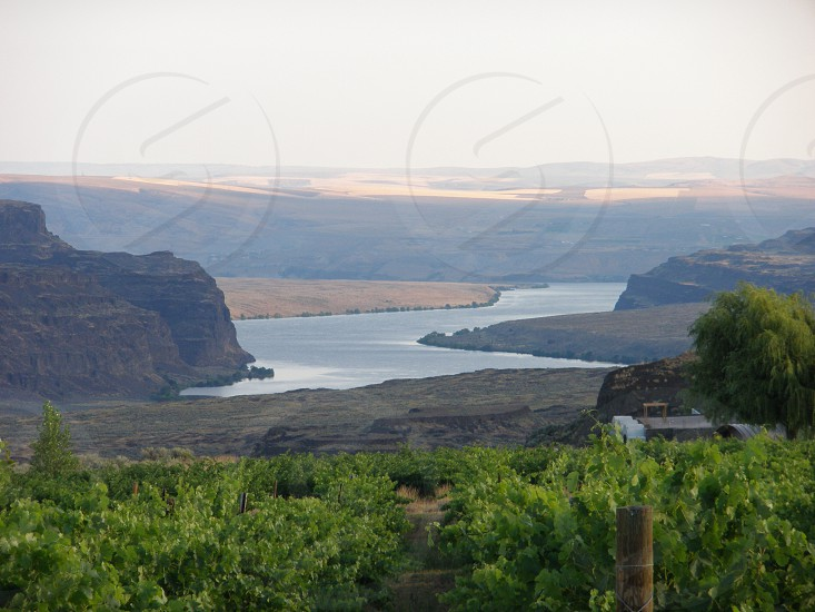Winery Columbia River Gorge photo