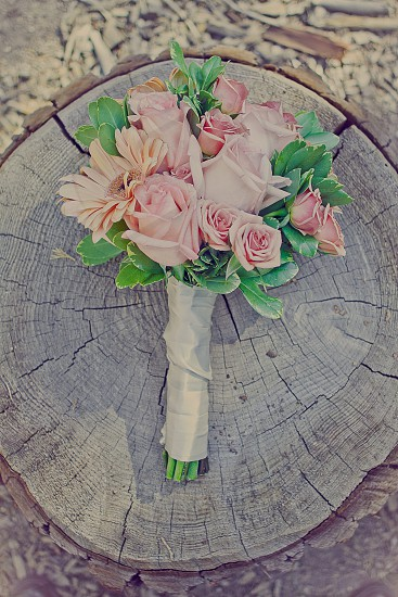 pink rose bouquet  photo
