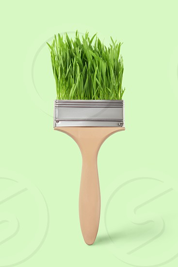 Decorative brush with juicy fresh herb on a light green background place for text. Non toxic concept painting. photo