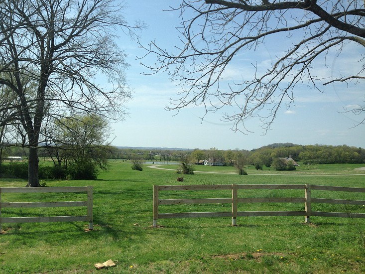 view of green grass lawn field photo