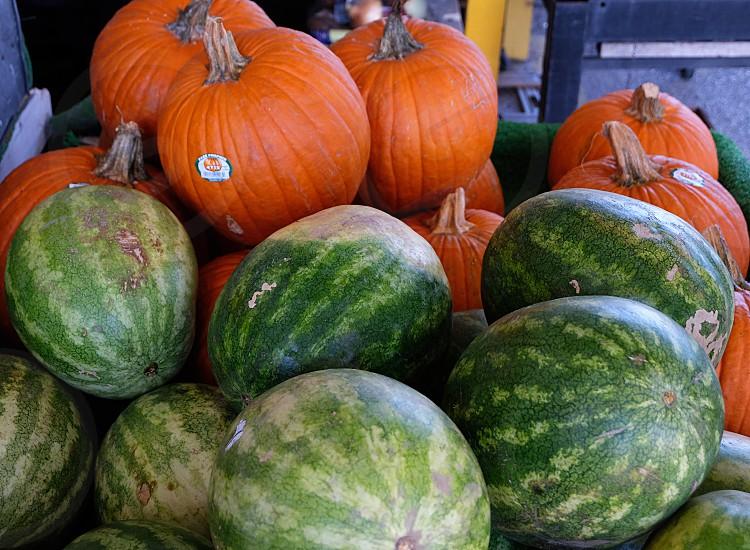 Pumpkin watermelon market fresh produce farmers market  photo