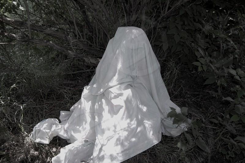 Ghost. Dark. Clarity. photo
