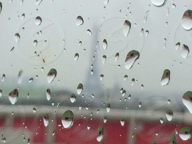 Wet  photo