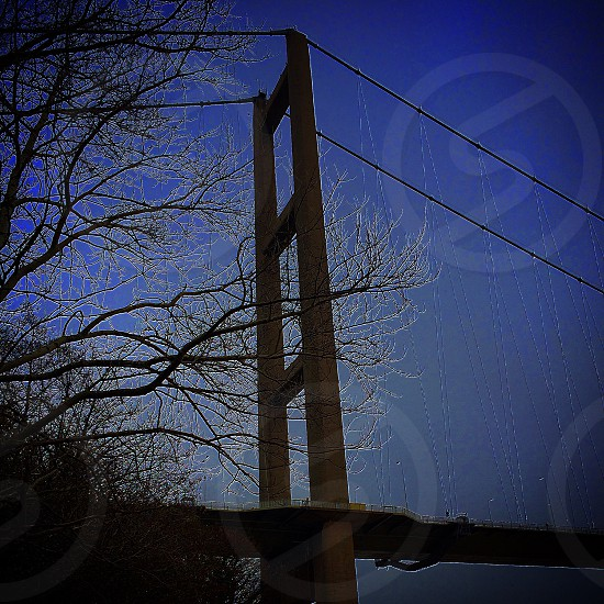 Humber bridge  photo