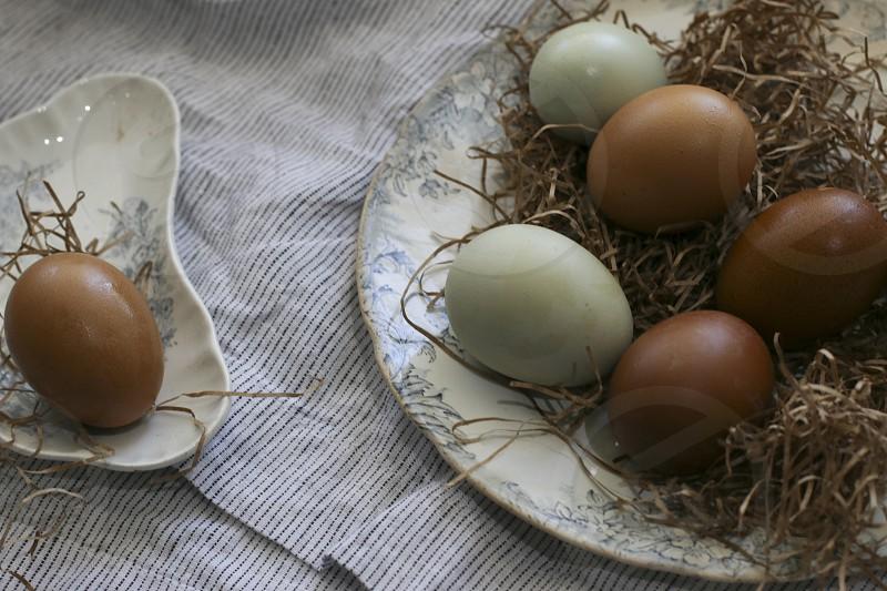 Fresh eggs photo