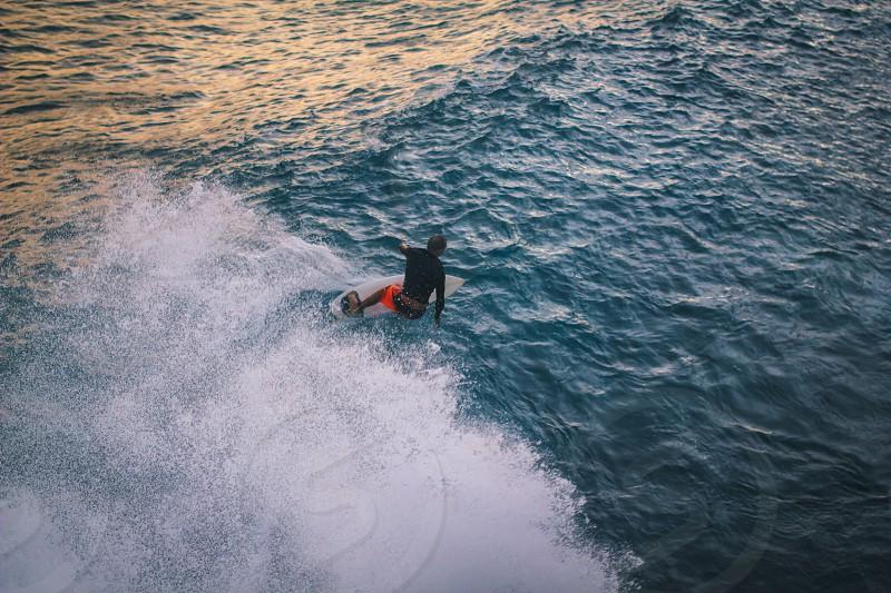 surfer surfing a ocean wave photo