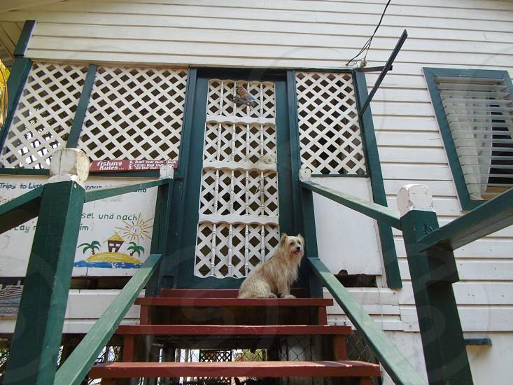 Private Porch photo