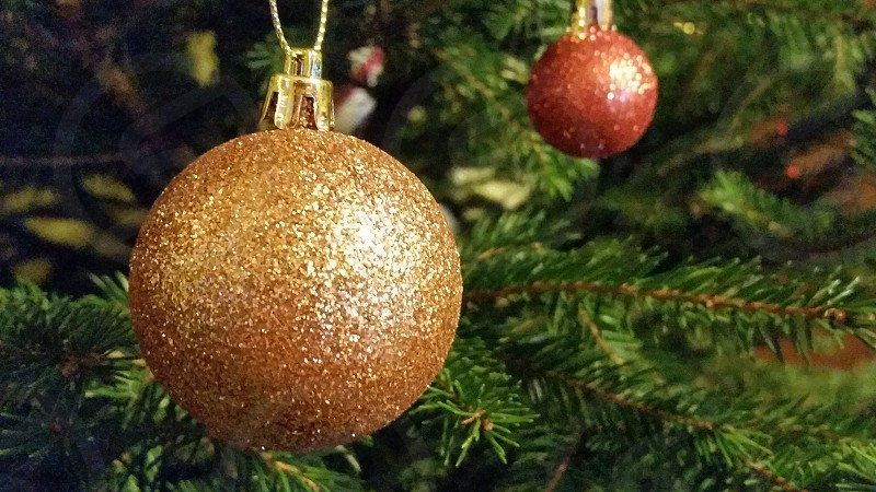 Two Christmas tree balls hanging from the tree. photo