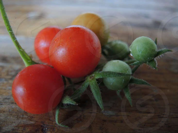 red tomatoes on brown wooden table photo