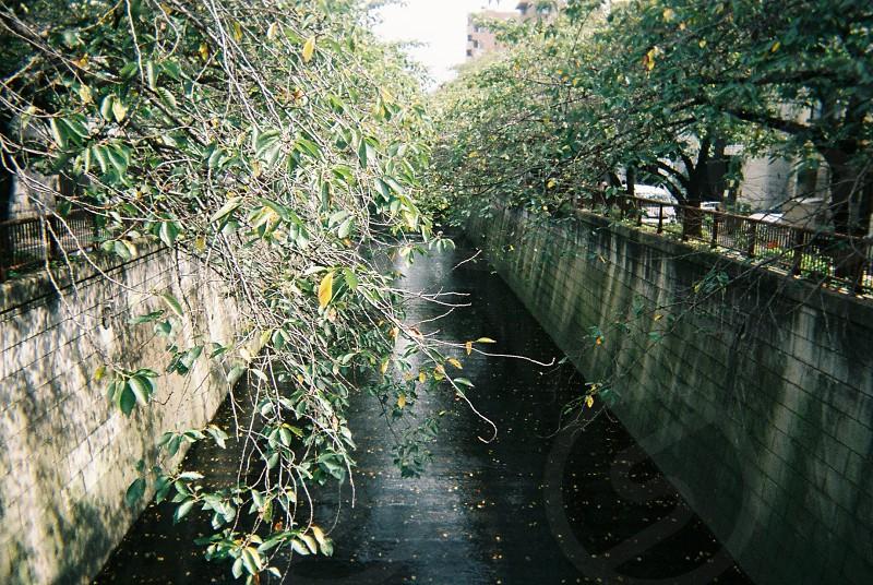Tokyo Megurogawa River photo