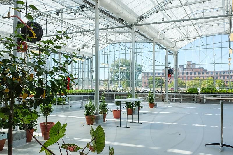 Greenhouse venue interiors architecture photo