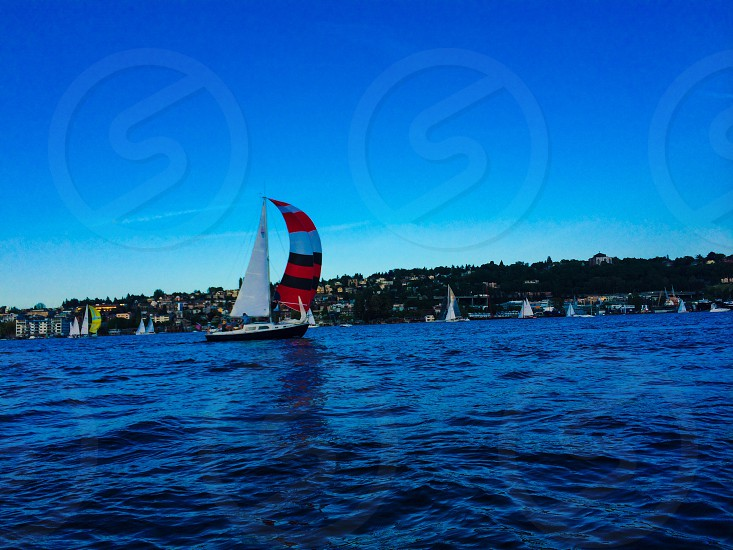 Sailing lake union Seattle race boats sails regatta photo