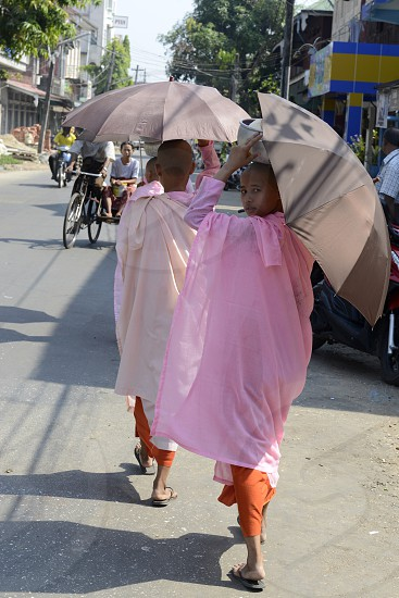 nuns on the road in the city centre of Myeik in the south in Myanmar in Southeastasia. photo