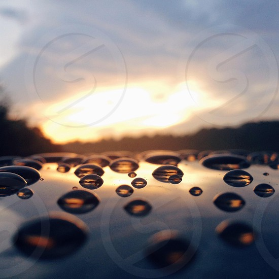 water dew photo photo
