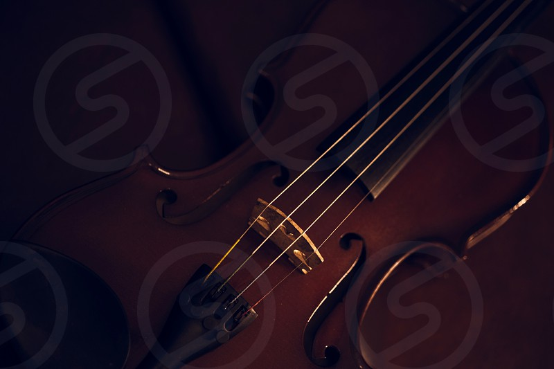 Music violin object low light studio musical play classic background  photo