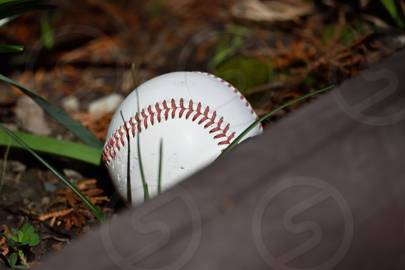 Remember those days when you would lose your baseball in the neighbor's yard? Oh wait... that still happens. photo