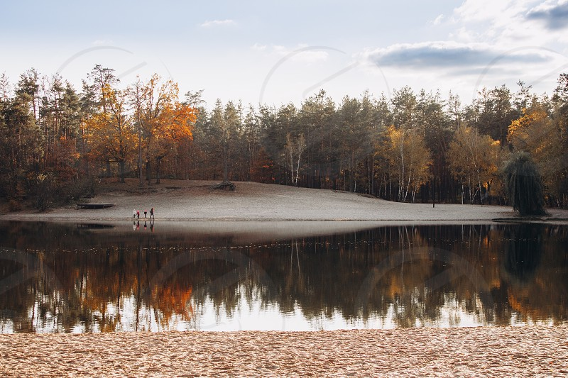 View on the lake and forest nature  photo