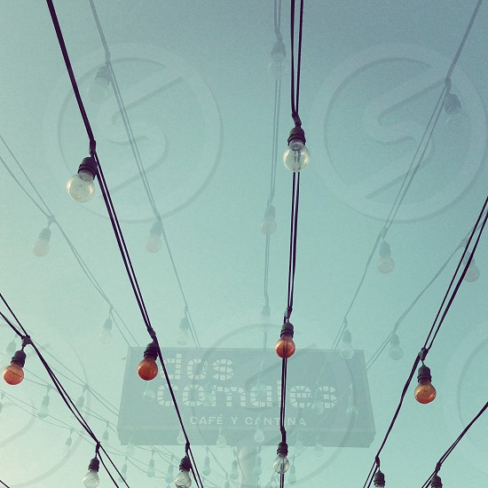 colored lightbulbs hanging on a place photo